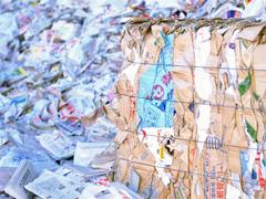 古紙リサイクル部門